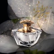 Attraction Addicted Essence de Parfum